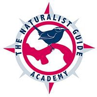 logo the naturalist guide academy200X200